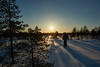 Winter sunrise. A frozen swamp (Artem Bagaev) Tags: зима восход никон архангельск боры пейзаж winter wide nikon d700 2485 landscape sunrise swamp shadows russia