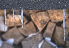 Eiszeit (Thomas A290) Tags: feuerholz jahreszeiten diverses winter öffentlich germany deu eis kalt