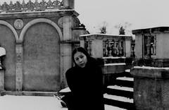 20180302143236_09 (filmowy_m) Tags: caffenol fomapan100 praktica winter analog poznan castle greenhouse