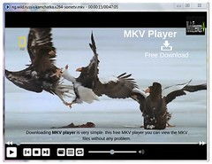 MKV Player - Free Download (Media Freeware) Tags: player free download mkv freeware media apps software video tool app pc mac android install