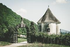(c) Wolfgang Pfleger-8015 (wolfgangp_vienna) Tags: kostanjevicanakrki slovenien slovenia