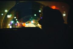 Morning Drive (flashfix) Tags: march062018 2018inphotos ottawa ontario canada nikond7100 40mm nikon flashfix flashfixphotography portrait sock dog canine animal pet austrailanshepherd triaustrailanshepherd bluemerle tricolour heterochromia bokeh car window morning city lights