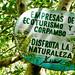 Disfruta La Naturaleza