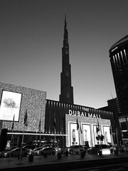 Burj Khalifa (Frau Koriander) Tags: dubai dubaimall burjkhalifa tallestbuildingintheworld building wolkenkratzer skyscraper cityscape city vereinigtearabischeemirate vae uae huaweip9 leica 828m nightshot night bluehour blauestunde monochrome nightlights lichter stadt