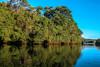 Calma antes de la caída (Josep Prats) Tags: argentina iguazu rio reflejos verde azul