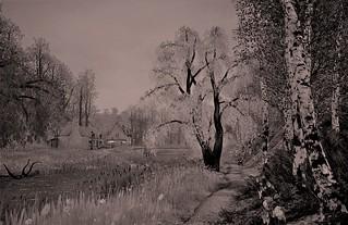 An idyllic river walk