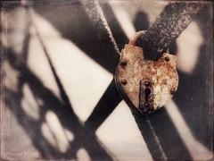 Love, locked (joannemariol) Tags: iphone7plus iphoneography snapseed icolorama formulas lock old love bridge crusty rusty