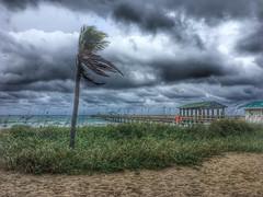 Florida Thunderstorm (ginoNYC) Tags: fortlauderdale florida southflorida beach thunderstorm palmtree fortlauderdaleflorida ftlauderdale pier