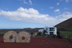 Farmhouse (koukat) Tags: lanzarote cactus garden cesar manrique jardin islas canarias canary islands quarry windmill