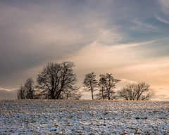 Winter (hjuengst) Tags: winter winterbeauty cold tree clouds cloudy sunset snow bavaria steinsee niederseeon moosach