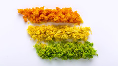 Citrus Zest (WibbleFishBanana) Tags: macromondays citrus zest lemon lime orange fruit rutaceae zitrone limone frucht limette mandarin yellow green rind peel skin