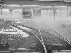 CRW_4161 (agianelo) Tags: track fog bw blackandwhite railroad tracks