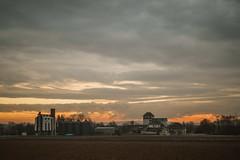 Sur la route vers Chatenois (m4tik - 128db) Tags: alsace vosges soleil lever du sony a9 a7riii voigtlander 40mm 12 chatenois sunrise