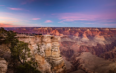 the world is vast. (almostsummersky) Tags: horizon rockformation peaks winter overlook canyon nationalpark brush evening viewpoint rocks southrim crowd matherpoint grandcanyon outcropping travel northrim isistemple grandcanyonnationalpark people arizona buddhatemple sunset cliffs dusk