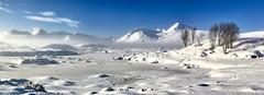 Winter on Rannoch Moor. (andrewmckie) Tags: rannochmoor theblackmount winter snow scottishscenery scenery scenicsnotjustlandscapes scottish scotland outdoor argyleandbute argyle