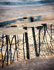 _ (Alberto Vanoli) Tags: map color winter season plantstrees snowice sunsetsunrise nature photo reflection hudsonvalley