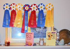 2018-02-22 (7) horse show ribbons won by  Caroline and Emily (JLeeFleenor) Tags: photos photography md maryland croom birthday celebration gathering family fun ribbons awards competition horseshow red yellow blue