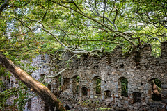 Nature wins...in the end (The Frustrated Photog (Anthony) ADPphotography) Tags: architecture category decay external flora kapidag kirazlimonastery places travel turkey ruin nature battle tree trees forest brick stone building travelphotography canon1585mm canon70d canon outdoor ruins