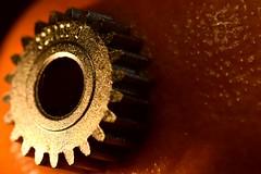 A Clockwork Orange HMM (D-Rat) Tags: macromondays macro sigma105mmmacro orange clockwork anthony burgess myfavouritenovelfiction