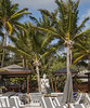 2017-04-19_08-42-58 Orient Beach Buddha (canavart) Tags: sxm stmartin stmaarten sintmaarten fwi orientbeach orientbay waves caribbean concretebuddha buddha coconut palmtrees statue beach bikinibeach