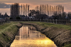 BREDA DI PIAVE. TRAMONTO SUL MEOLO. (FRANCO600D) Tags: fiume fiumemeolo tv bredadipiave sunset tramonto landscape paesaggio alberi pioppi vigna riflessi luce canon eos600d franco600d