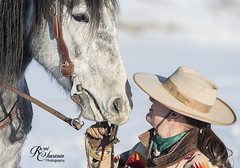 CodyWU_012318_1319 (Roni Chastain Photography) Tags: horses wyoming thehideoutranch wranglers big sky snow winter horse ridershorses west westernwear western
