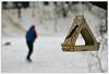 Winter. January'18/ # 2. (GlebLv) Tags: winter snow ice a6000 sony revue13535 skates pond park feeding
