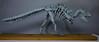 Origami T. Rex Skeleton - 3 (Tankoda) Tags: origami paper art dinosaur dinosaurs tyrannosaurus t rex trex tyrannosaur mesozoic fossil skeleton wood mount osteology paleontology issei yoshino travis nolan design hours