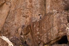 Hueco-115 (Brandon Keller) Tags: hueco rockclimbing travel texas