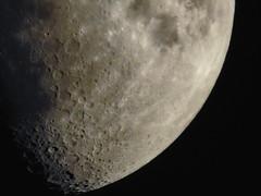 Today's Moon (hardraf) Tags: 6637 astronomy lunar moon night sky taurus waxinggibbous