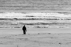 Photographer on the hunt (JMFusco) Tags: blackandwhite islandbeachstatepark newjerseyshore newjersey