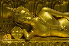Thailand - Bangkok - Ancient City 23_Temple of the Anatomy of the Universe_DSC6212 (Darrell Godliman) Tags: thailandbangkokancientcity23templeoftheanatomyoftheuniversedsc6212 templeoftheanatomyoftheuniverse anatomyoftheuniverse thaitemple buddhisttemple ancientsiam ancientcity mueangboran samutprakan bangkok thailand asia travel travelphotographer travelphotography เมืองโบราณ buddhism buddhist temple buddha gold golden statue statues recliningbuddha