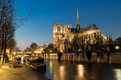 Notre Dame de Paris in night time (arnaud_martinez) Tags: blue city cityscape france illuminated light napoleon night notredame outdoors paris seine sky street arch architecture bridge building bulbs christmas famous flow iron island lady landmark lighthouse lighting monument old river show skyline tower traffic travel urban