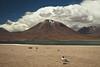 Atacama (Ana Claudia Lubitz) Tags: chile atacama atacamadesert nature naturelovers southamerica landscape
