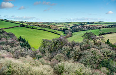 Birds Eye View - South East Cornwall. (john lunt) Tags: english cornish rural rolling countryside winter colour color tree trees green farmland woodland patchwork fields valley blue sky sunlight colourful colorful polveithan farm east hill lanteglos fowey cornwall england uk britain vivid vibrant verdant greens horizontal landscape hdr tone mapped johnlunt john lunt uncompressed raw sony alpha a7r2 zeiss 55mm f18 za prime lens