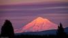Mount Hood at Sunset - Oregon (petechar) Tags: petechar charlesrpeterson mountains mounthood estacada oregon sunset winter snow landscape panasonicgh5 panasonicleica100400 tripod