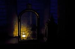 Small light for all those who left us too soon (Matjaž Skrinar) Tags: 100v10f 1025fav 250v10f