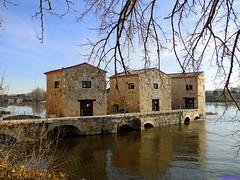 Zamora (santiagolopezpastor) Tags: espagne españa spain castilla castillayleón zamora provinciadezamora medieval middleages duero ríoduero río river
