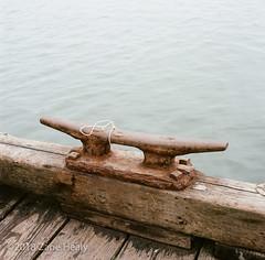 Crab Pots (Zane's Photography) Tags: hasselblad500cm planar kodak zeiss 80mm portra400 newport oregon dock rust decay harbor