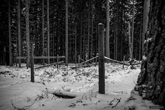 Gallows hill (kentkirjonen) Tags: abandoned övergivet övergiven old gammal sweden sverige dalarna ue decay förfall wood trä canon 450d winter vinter snow snö skog forest cold kallt bw gallow hill kulle galgbacke galgbacken