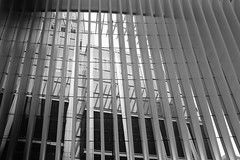Oculus Fins (Zach K) Tags: newyork ny fins design architecture perpendicular santiago calatrava nyc new york city world trade center path station wtc lower manhattan portauthority port authority silverstein white black bw lines patterns fujifilm fuji x100f acros oculus theoculus