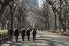 A walk in Central Park (kartix) Tags: ny newyork centralpark walking citypark