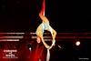 www.LeCirqueDeNoel-Paris.com_6796 (Mixatom) Tags: christianebouglione bouglione spectacle cirque circus zirkus circo cabaret kabaret paris acrobate acrobat akrobat rollerskating equilibrist straps aerialstraps silk aerialsilk clown juggling jonglerie jongleur juggler gymnastique gymnastic gymnaste gymnast burlesque musique music concert standingovation mâtchinois chinesepole paaldans pole dancecontorsionnistecontortionistcontorsioncontortionhandstandhand handmain à main nikon canon tamron sigma
