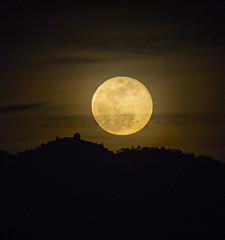 Rising Super Moon (Bob Nastasi) Tags: supermoon moon fullmoon lickobservatory sanjose mounthamilton california d800e bobnastasi