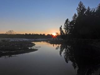 Isar oxbow lake