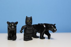 Black Panther (166 Customs) Tags: