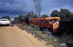 3181 N1876 DB1583 Jarrahdale Branch 13 July 1982 (RailWA) Tags: raiwa philmelling westrail 1982 n1876 db1583 jarrahdale branch