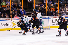 "Kansas City Mavericks vs. Florida Everblades, February 18, 2018, Silverstein Eye Centers Arena, Independence, Missouri.  Photo: © John Howe / Howe Creative Photography, all rights reserved 2018 • <a style=""font-size:0.8em;"" href=""http://www.flickr.com/photos/134016632@N02/39491124745/"" target=""_blank"">View on Flickr</a>"