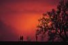 (Benoms) Tags: pareja amor love inlove enamorados desamor destino esperanza couple atardecer sunset rojo red contraluz sun nubes clouds arbol tree quebec canada canadá benoms