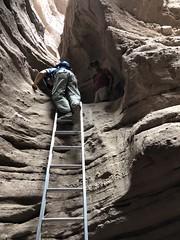 2018-02-15 GOPS Geology Hike (137) (MadeIn1953) Tags: 2018 201802 20180215 greatoutdoorsgo go gops greatoutdoorspalmspringsgops hiking coachellavalley california riversidecounty meccahills paintedcanyon laddercanyon slotcanyon ladder